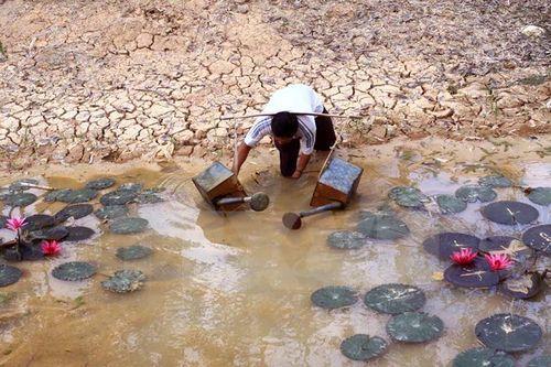 Thủy điện Mê Công sẽ làm thiệt hại 22 tỉ USD